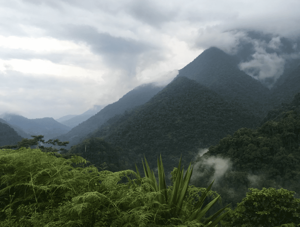 Trek to the Lost City of Columbia